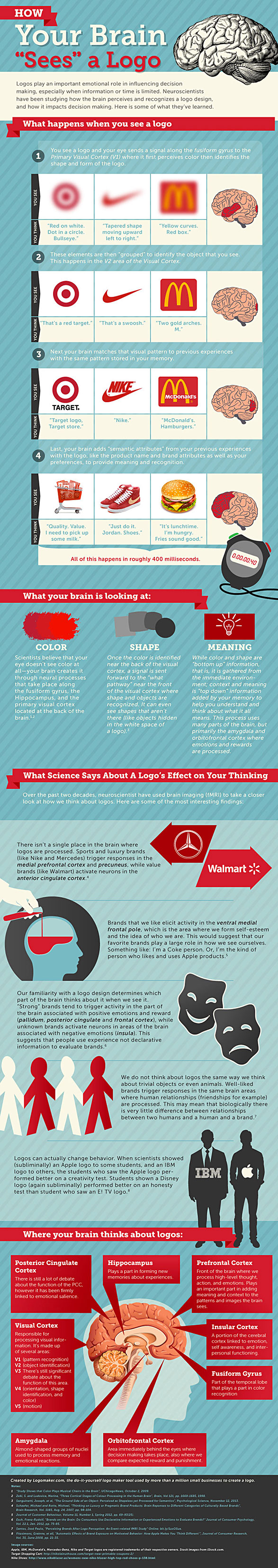 Infographic on how your brain breaks down a logo